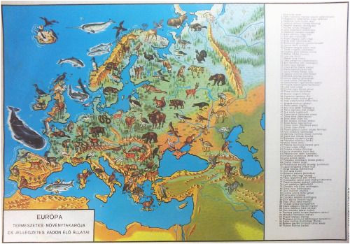 Vegetation Map Of Europe Natural Vegetation and Characteristic Wild Animals Of Europe