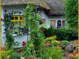 Adare Ireland Map thatched Cottage In Adare Ireland Ireland Ireland