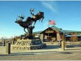 Cabelas In Minnesota Map 48 Best Owatonna Mn Images Owatonna Minnesota Country Life