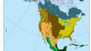 California Biome Map Biomes north America Ref Geo Regions Biomes America Map