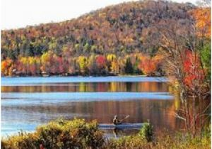 California Fall Color Map 43 Best Fall Foliage In Upstate New York Images Upstate New York