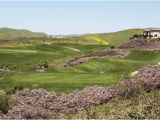 California Golf Course Map This Golf Course is Always In Great Shape Beautiful Layout