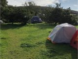 Campsites In Ireland Map Rainbow Hostel Updated 2019 Reviews Price Comparison Dingle