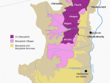 Champagne In France Map the Secret to Finding Good Beaujolais Wine Infografics