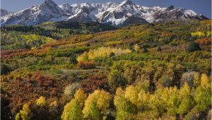 Colorado Fall Colors Map Tips to See Fall Foliage In Colorado