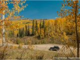 Colorado Foliage Map Kebler Pass Fall Colors Picture Of Kebler Pass Crested butte