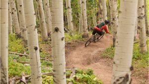 Colorado Springs Bike Trail Map Mtb Project Mountain Bike Trail Maps