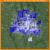 Crime Map Columbus Ohio Columbus Oh Crime Rates and Statistics Neighborhoodscout