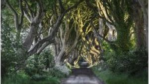 Dark Hedges Ireland Map 23 Best Dark Hedges Ireland Images In 2018