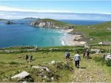 Dingle Bay Ireland Map the 10 Best Dingle tours Tripadvisor
