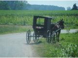Ethridge Tennessee Amish Map 12 Delightful Amish In Ethridge Tn Images Amish Country Amish
