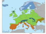 Europe Vegetation Map Biomes Of Europe 2415 X 3174 Europe Biomes Europe
