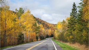Fall Color Map Minnesota Autumn In Minnesota where and when to See the Fall Foliage