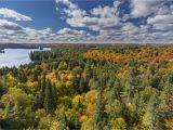 Fall Foliage Map Canada Canada Fall Foliage Reports