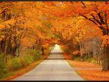 Fall Foliage Map New England Fall Colors Science Spray Ideas Wisconsin Fall Colors Fall