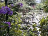 Giverny Map France Le Jardin Des Nympheas Picture Of Giverny Eure Tripadvisor