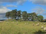 Ireland Stone Circles Map Craigh Na Dun Modern Stone Circle Monolith the Megalithic Portal