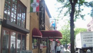 Little Italy Bronx Map the top 10 Things to Do Near Bronx Zoo Tripadvisor