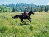Livermore Colorado Map Cherokee Park Ranch Reviews Livermore Co Tripadvisor