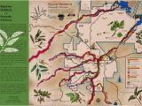 Map Of Arizona Showing Prescott Riparian Habitats Of Prescott Arizona Map Prescott Creeks