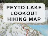 Map Of Banff Canada Peyto Lake Map Of the Overlook Hiking Trail Along the