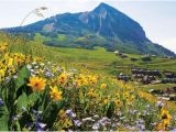 Map Of Crested butte Colorado Crested butte Colorado Map Lovely the top 10 Things to Do Near the