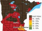 Minnesota Brewery Map 15 Best Craft Beer Paddles Images Craft Beer Home Brewing Ale