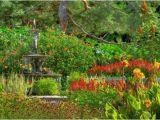 Minnesota Landscape Arboretum Map Chanhassen 2019 Best Of Chanhassen Mn tourism Tripadvisor