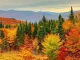 New England Fall Colors Map How to See New England Fall Foliage at Its Peak