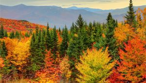 New England Fall Foliage Map How to See New England Fall Foliage at Its Peak