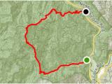 Newton north Carolina Map Mingus Mill and Newton Bald Trail north Carolina Alltrails