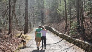 North Carolina Arboretum Map Dog Friendly Hiking Trails Picture Of the north Carolina