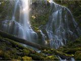 Proxy Falls oregon Map Hike to Proxy Falls Road Trip Washington