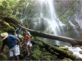Proxy Falls oregon Map Lower Proxy Falls Picture Of Proxy Falls Sisters Tripadvisor