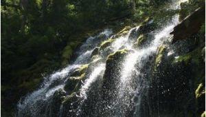 Proxy Falls oregon Map Upper Proxy Falls Picture Of Proxy Falls Sisters Tripadvisor