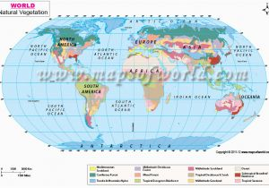 Vegetation Map Of Europe Vegetation Map Of the World Cyndiimenna