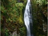 Waterfalls In oregon Map 20 Awesome Lane County Waterfalls Images Waterfall Waterfalls