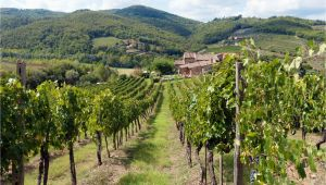 Wineries In Tuscany Italy Map Chianti Italy Travel Guide to Chianti Wine Region In Tuscany Italy